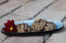 Low-FODMAP Recipes: Chocolate Chip Cookies - choc chip cookies